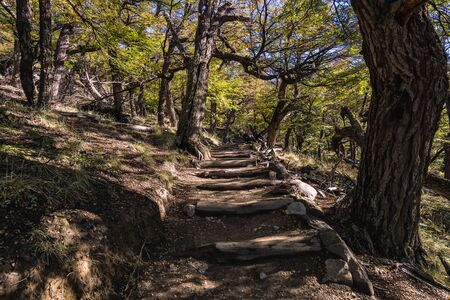 On the trail to the Fitz Roy mount in Los Glaciares National Park, El Chalten,Patagonia, Argentina.