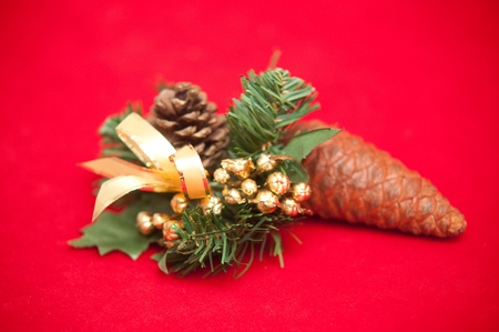 Christmas decoration with a pine cone . Stock Photo - 9554363
