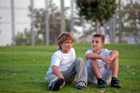 Portrait of two boys on the grass in the park  . Stock Photo