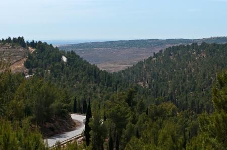 Jerusalem hills during the summer. Israel .