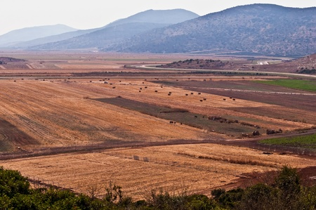 Agrarlandschaft. Lower Gallil. Nördlich von Israel. Standard-Bild - 9896321
