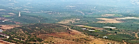 View of the lower Galil Israel . photo