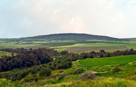 Spring landscape. Golan. Israel. Stock Photo