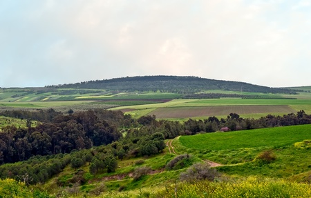 israel farming: Spring landscape. Golan. Israel. Stock Photo