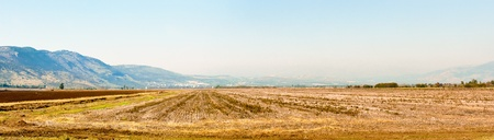 Valley Agmon-Khula and adjacent to the ridges and the Golan mountains of Naftali. Winter. Israel. photo