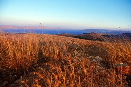 Blick auf den Golan im Sommer. Nord-Israel. Standard-Bild - 11514017