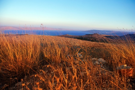 View of the Golan in the summer . North Israel.