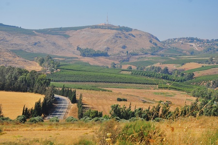 View of the Golan in the summer . North Israel. Stock Photo - 11514018