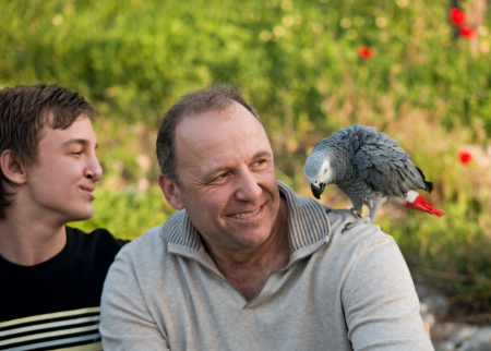 Portrait of a boy teenager and his father with a gray parrot Jaco. Stock Photo