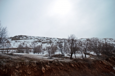 Mount Hermon  - northern Israel   Spring   photo