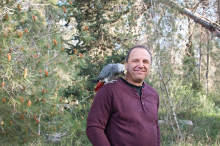 Man with a parrot  Jaco on his shoulder  in a forest.