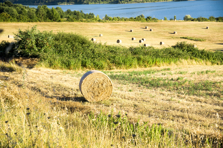 agriturismo: Tuscany, Italian Countryside, landscape