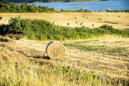 orcia: Tuscany, Italian Countryside, landscape