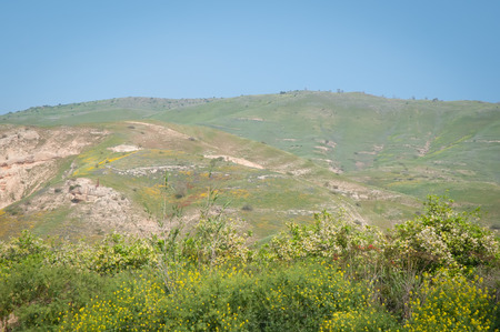 Spring in mountains in the North of Israel .