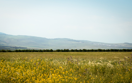 View from Galilee Mountains near Galilee Sea - Kinneret, Israel. Stock Photo