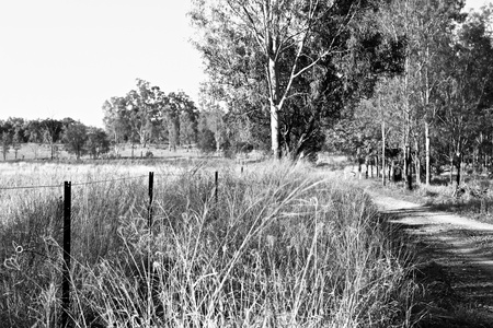 fencepost: Country scene in black and white Stock Photo