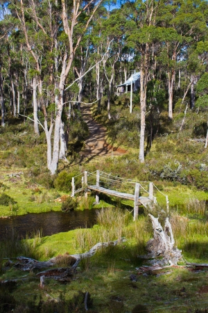 Bridge over a stream in australian bush photo