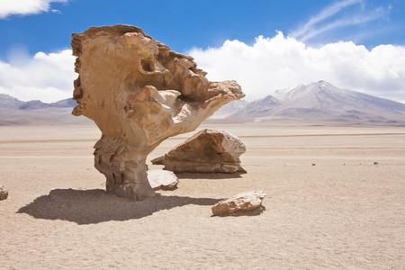 arbol: El Arbol de Piedra, una formaci�n rocosa de piedra por la erosi�n en el desierto de Bolivia Foto de archivo
