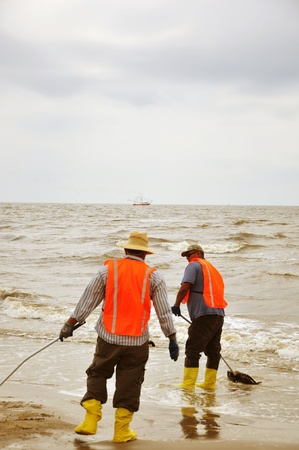 cleanup: Grand Isle, Louisiana - April 14, 2011 - Shrimping goes on as workers clean beaches in Louisiana Editorial