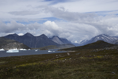 artic: landscape in south of greenland