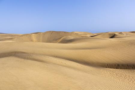 canary island: dune in canary island