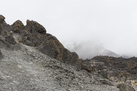 kilimanjaro: landscape of kilimanjaro
