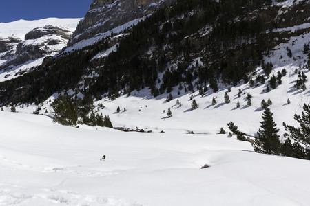ordesa: beauty landscape of national park of ordesa Stock Photo