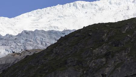 treck: glacier in south greenland