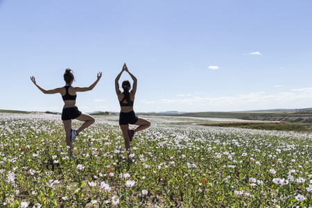 sportwoman: girls doing yoga in nature