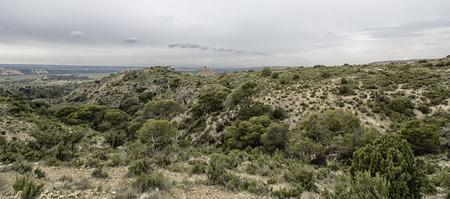 landscape in spanish desert