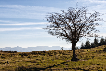 landscape of the basque country Stock Photo - 123927955