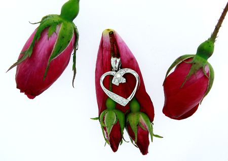 closeup of a diamond heart pendant with red roses isolated on white