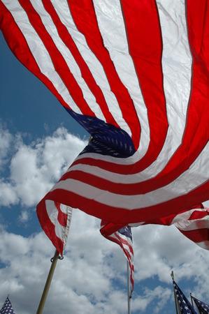 바람에 미국 국기입니다.
