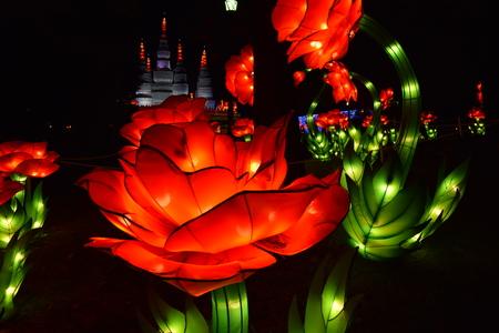 실크 꽃 축제 밤에 표시합니다. 스톡 콘텐츠