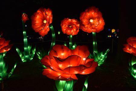 축제에서 실크 꽃의 그룹입니다. 스톡 콘텐츠
