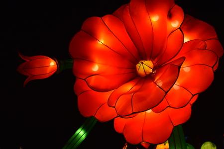 중국 축제에서 꽃 랜턴입니다.