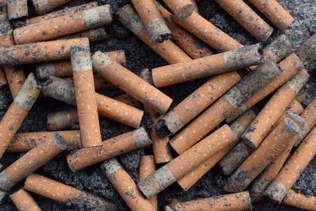 보도에 담배 꽁 초. 스톡 콘텐츠 - 95726140