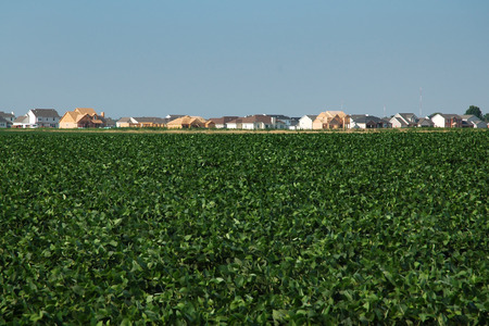 Home Construction Overtaking The Soybean Fields