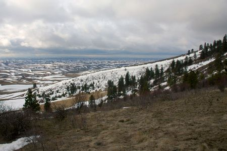 palouse: View from Kamiak Butte, across the Palouse region of SE Washington state.  In the inland northwest