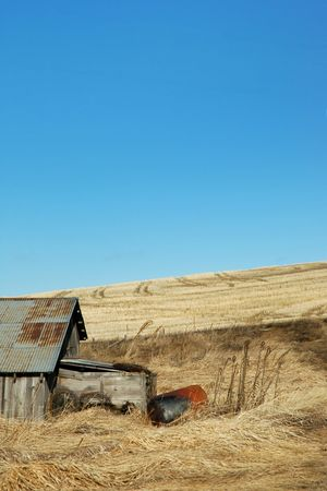 palouse: Waiting for Spring on the Palouse