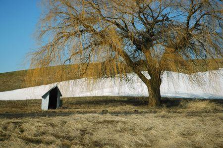 palouse: Shelter on The Palouse