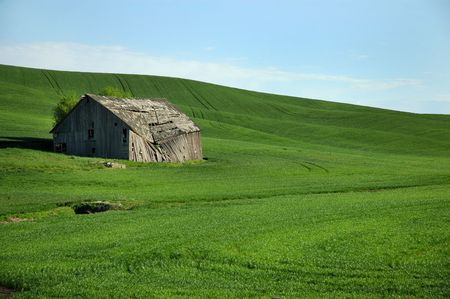 palouse: Collapsing Barn On The Palouse