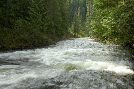 Elk Creek Falls, Northern Idaho, USA 版權商用圖片