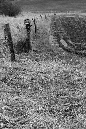 palouse: Muddy farmland and fence line, in the Palouse region of southeastern WA
