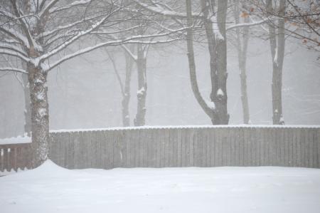 Snow Storm Stok Fotoğraf