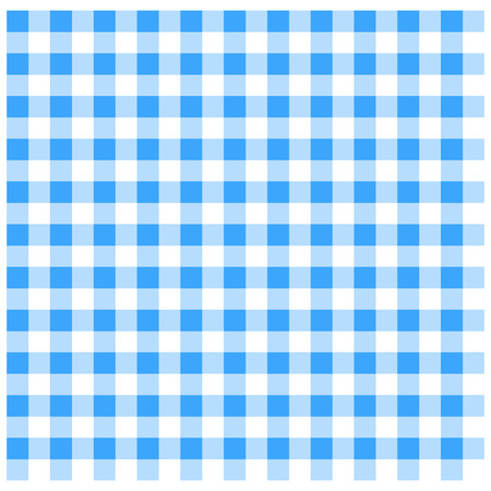 checked: Blue Gingham
