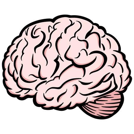 Brain Ilustrace