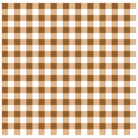 Brown Gingham