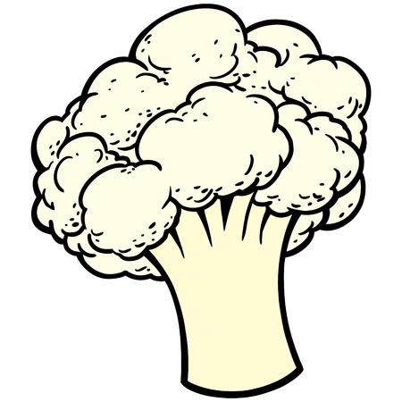 cauliflower: Cauliflower Illustration