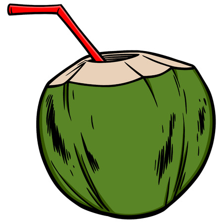 coconut water: Coconut Water Illustration